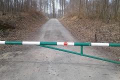 drogi-lesne-001